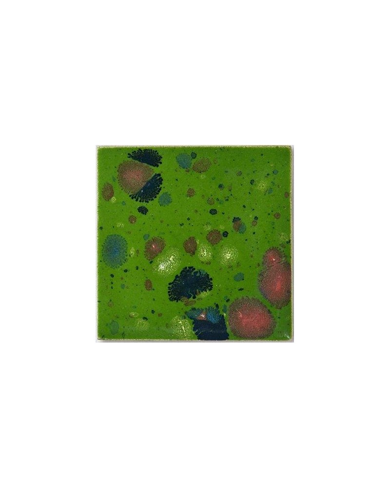 Kwastglazuur bosweide glanzend 9595