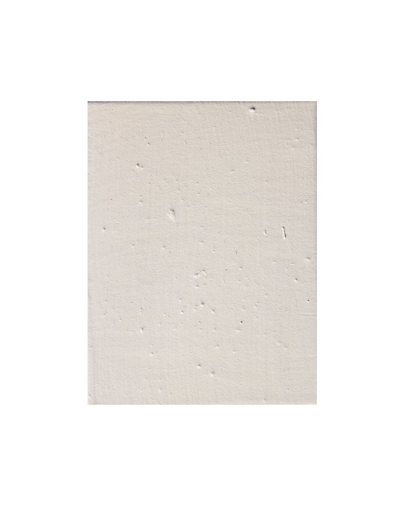 Wit mat glazuur aardewerk