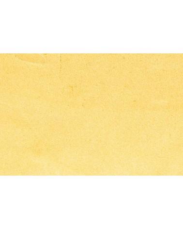 SABURRTOOTH Raspelfrässcheibe 50 mm rund